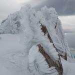 Scultura di ghiaccio plasmata dal vento