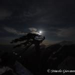 Loricato di notte