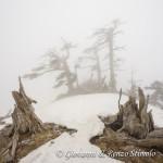 Avvolti nella nebbia sulla cresta Sud di Serra delle Ciavole
