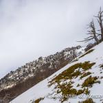 La cresta Ovest di Serra delle Ciavole
