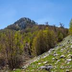 La cresta Nord di Serra delle Ciavole con le Sentinelle che sorvegliano la Grande Porta del Pollino