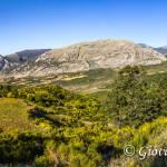Panorama dalla strada per Serra Scorsillo