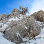 Il loricato nella roccia