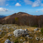Monte Palanuda