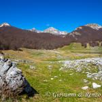 Monte Altare Monte Petroso e Monte Iamiccio