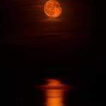 La luna appena sorta si rispecchia sul mare del Golfo di Sibari