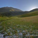 Campi a Forca Presta con il Monte Vettore sullo sfondo
