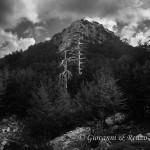 Serra delle Ciavole e le sentinelle