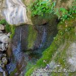 Una delle tante sorgenti che sgorgano direttamente dalle pareti delle gole