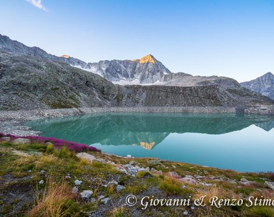 Il Monte Adamello si rispecchia nel lago Venerocolo