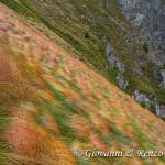 Prati scoscesi in val Gallinera