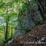 Pareti rocciose nelle gole basse di Iannace