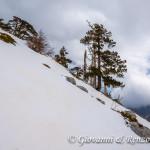 Salendo a Serra delle Ciavole