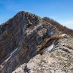 La cima di Cozzo del Pellegrino
