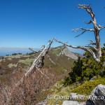 Serra di Crispo risalendo la cresta Nord di Serra delle Ciavole