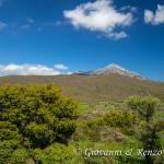 Il Monte Sellaro dalla Pietra del Demanio