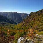 Il Vallone Fornelli che si tuffa nella Valle dell'Argentino