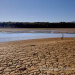 La foce del Bradano immissario del lago di San Giuliano