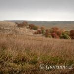 La Murgia in autunno